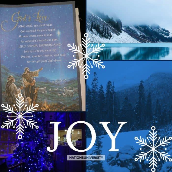 Weekly Reflection – Joy