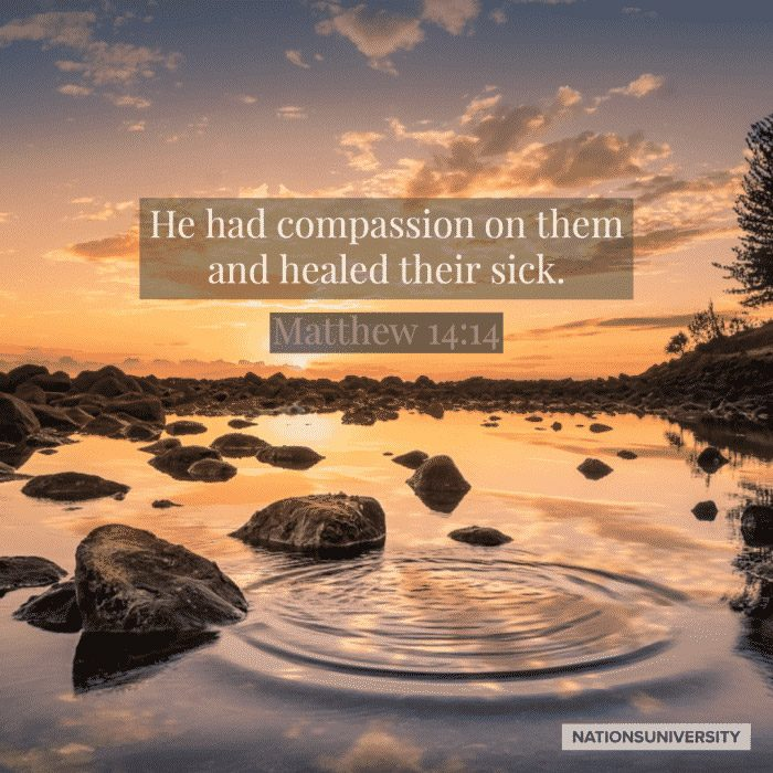 Weekly Reflection – Ministry in Times of Illness and Loss