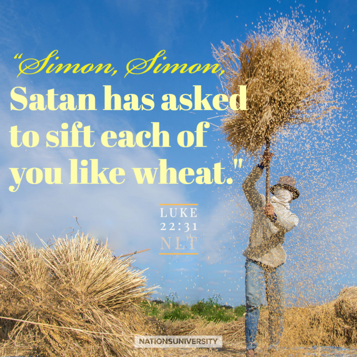 Sifted Like Wheat